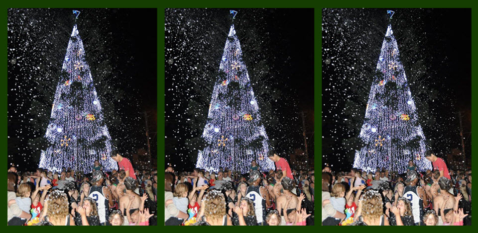 christmas lights tree snow christmas in cooroy