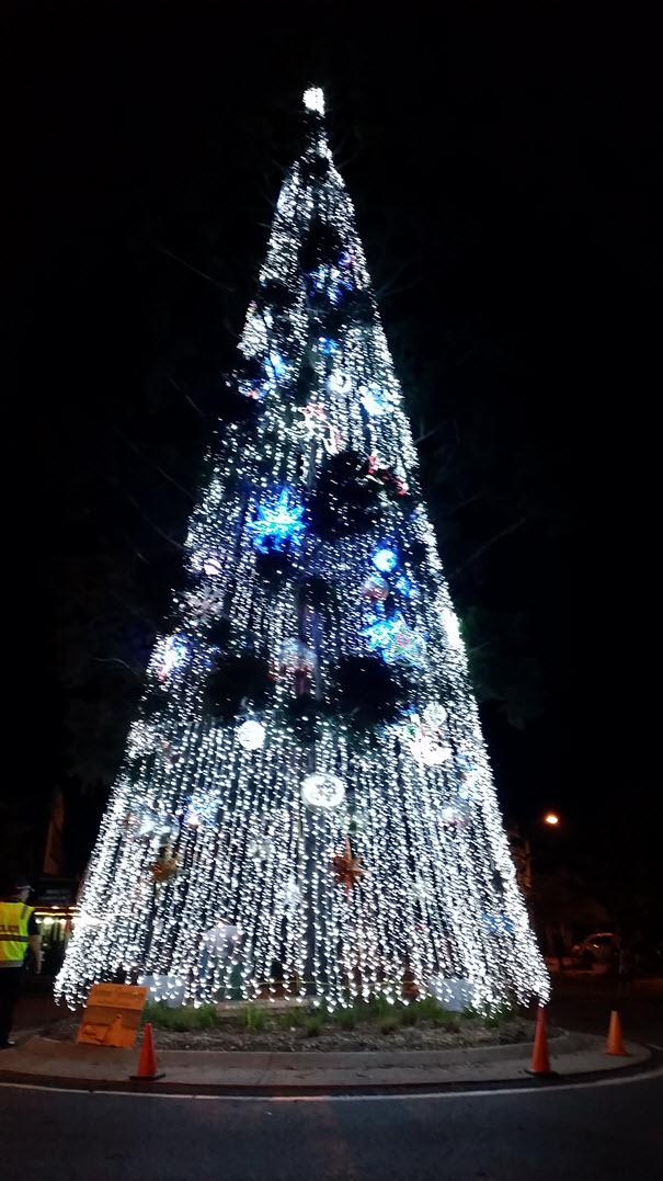 Help us refurbish our beautiful Christmas Tree
